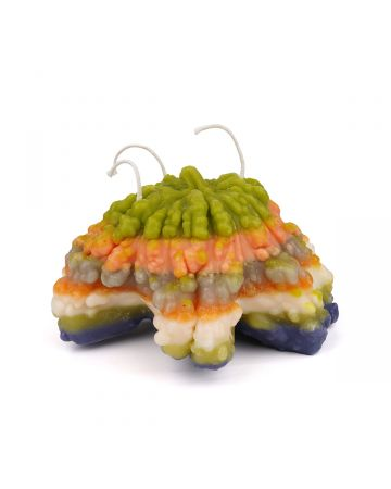 Piera Bochner TABLE GOURD CANDLE / MULTI