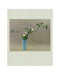 IDEA IKEBANA-AN IDEA BOOK