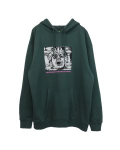 iggy CIRCUMSTANCES ALPINE GREEN HOODED SWEATSHIRT / ALPINE GREEN